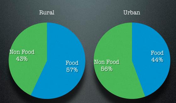 Food vs Non Food